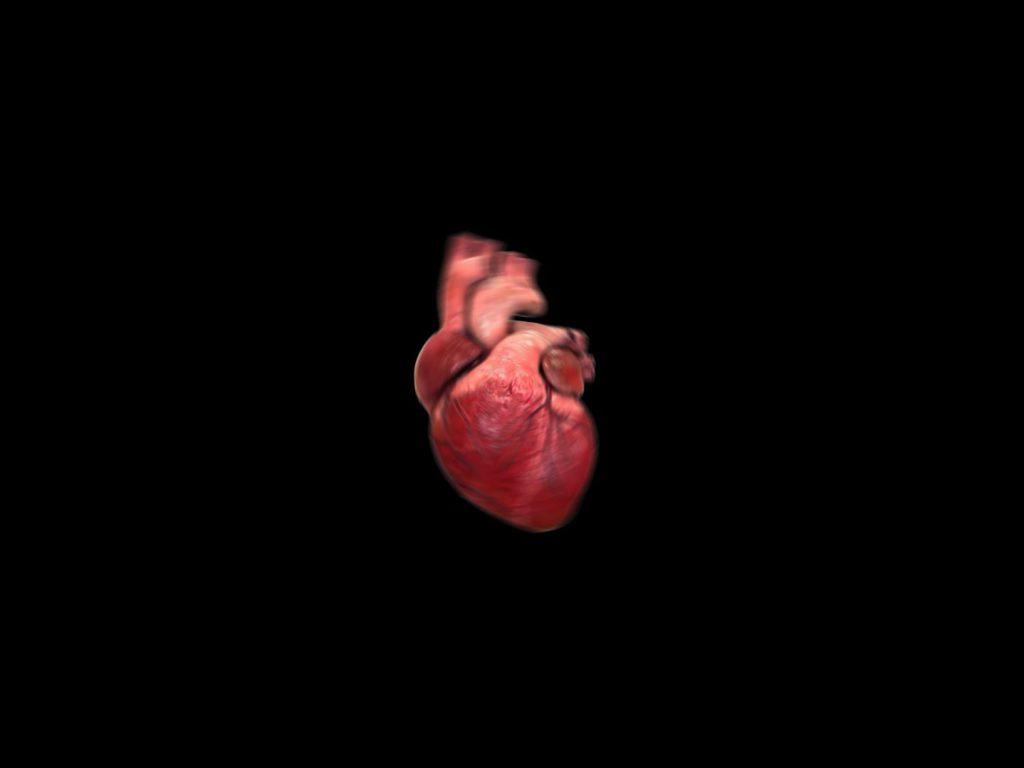 Heart The Hit
